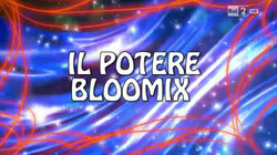Il potere bloomix