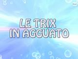 Le Trix In Agguato
