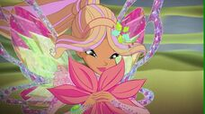 Flora tynix in 717