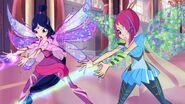 The-Winx-Club-Fairies-image-the-winx-club-fairies-36648452-1600-899