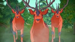 Deerbeetle