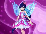 Butterflix Musa