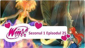 Winx Club - Sezonul 1 Episodul 25 - Marea vrăjitoare -EPISODUL COMPLET-