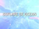 Suflare de ocean