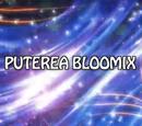 Puterea Bloomix