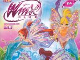 Issue 114: Fairy Talent