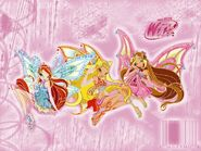 Winx-enchantix-bloom-stella-flora-the-winx-club-6730592-800-600