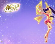 The-winx-images-the-winx-club-15474402-1280-1024