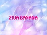 Ziua Banana