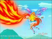 Bloom absorve el Fuego con el poder de la Coraza llameante