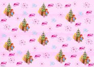 Baby Bloom, Stella & Flora - Christmas Wrappers -2