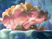 Shimmering-shells
