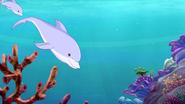 Dolphin s5 6