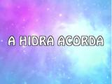 A Hidra acorda