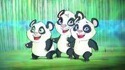 PandasT7