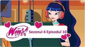 Winx Club - Sezonul 4 Episodul 10 - Audiția -EPISODUL COMPLET-