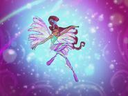 Sirenix Aisha