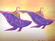 Balenele Cântătoare