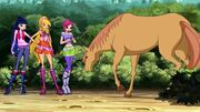 Winx Club - Episode 506 (5)