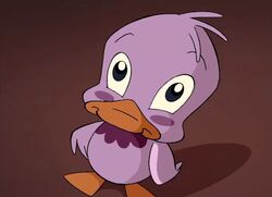 Pepe duck-1-