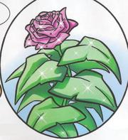 Flower of Truth I81