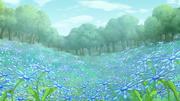 Blumengarten 01