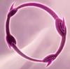 Schwarzer Kreis Icon