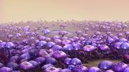 Mutierter Wald von Linphea 707 06