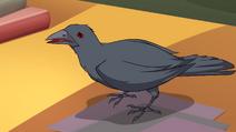 Griffin 603 03