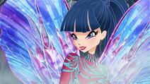Musa Dreamix 02