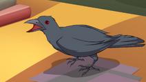 Griffin 603 02