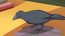 Griffin 603 04