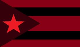 Shadow flag