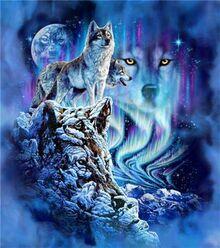 Амарок (волк)