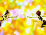 Флора и Мирта входят в контакт
