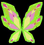 Крылья Флоры в Трасиксе