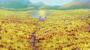 Поляна золотых цветов в тайном саду Алфеи