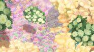 Цветочный мини-мир 7х24 (1)