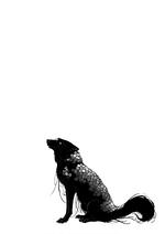 Volume 05 Euini (Wolf form) Illustration