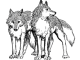 Scaled Wolves
