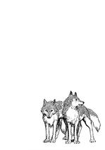 Volume 04 Scaled Wolves Illustration
