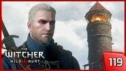 The Witcher 3 - Dark Secret of the Isle - Story & Gameplay Walkthrough 119 PC