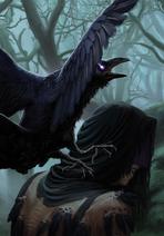 Gwent cardart skellige crow messenger