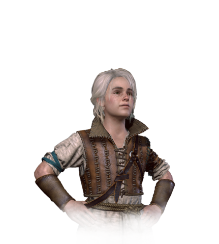 File:Tw3 journal ciri young.png