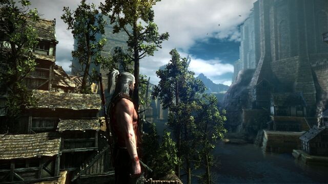 File:Witcher-2--04.jpg