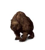 Tw3 journal bear