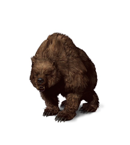 File:Tw3 journal bear.png