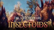 What are Insectoids? The Witcher 3 Lore - Insectoids