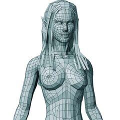 Polygon model