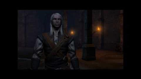 The Witcher Prison Break (Hard) HD